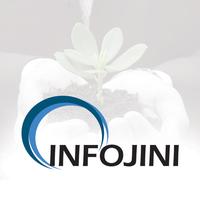 Infojini Consulting